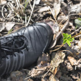 View of foot in the boots close to young green plant Stock Photos
