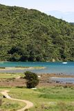 Ngakuta Bay shoreline off Queen Charlotte Sound NZ. View of a footpath on shoreline of Ngakuta Bay off Queen Charlotte Sound near Picton on South Island New Stock Photos