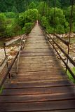View of the forest from the bridge Karpaty royalty free stock photography