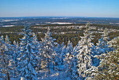 View from forest fire tower. (3). Linnekleppen is the highest point in Rakkestad municipality and Mark municipality in Østfold, it lies just on the border Royalty Free Stock Photos