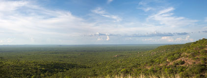 View of the forest, the horizon is Angola Stock Photo