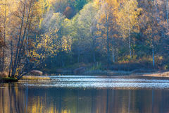 View of a forest lake in autumn Stock Photo