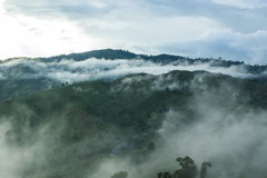 View of forest on Morning Mist. At Tropical Mountain Range after Royalty Free Stock Image