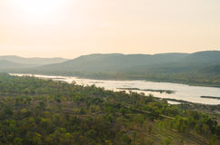 View of forest and river Stock Photos