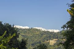 View from the forest to the green slope of the mountain under the snowy peaks and clear blue sky stock photography