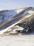 View of forest trees in snowy plateau of Castelluccio di Norcia Stock Photos