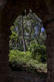 View on forest through wall. View on sunlit green forest through opening in massive ancient wall stock photography