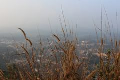 A view form hills down the city through the dried up grass. Virajpet from Karnataka. royalty free stock photography
