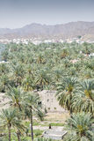 View from fort Nizwa. View from the fort to buildings and palms of the town Nizwa, Oman Royalty Free Stock Image