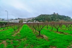Fortified town and nearby fields, Obidos Royalty Free Stock Photo