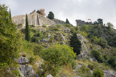 View fortress of Kotor Royalty Free Stock Photography