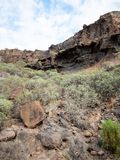 Rocky cliff face, Gran Canaria, Canary Islands. A view of the fragile ecosystem of the volcanic Gran Canary Canary Islands landscape as scrub bushes struggle to stock photography
