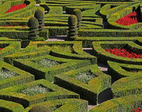 A view  of a French Formal Garden. Royalty Free Stock Image