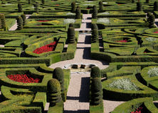 A view  of a French Formal Garden. Stock Image