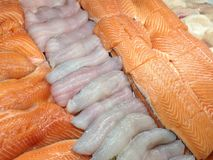 Seafood in the store. View at the fresh fish fillets on the ice in the store display case Stock Image