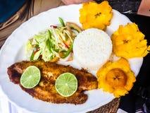 View on fresh Fish, rice, bananas and a salad royalty free stock photo