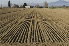 View of freshly plowed land Stock Images