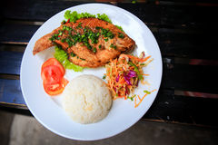 View of fried fish with rice vegetables on white plate Royalty Free Stock Photo