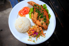 View of fried fish with rice vegetables on white plate Stock Image
