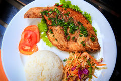View of fried fish with rice vegetables on white plate Stock Photography