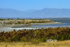 Free View From Antelope Island Across The Great Salt Lake To The Wasatch Mountains In Utah Stock Images - 126872334