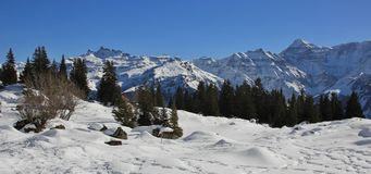 View From Braunwald, Swiss Alps Stock Photos