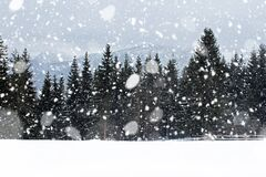 Free View From Gubalowka 1,126 M On Tatry Mountains And Forest In Snowing Day, Zakopane, Poalnd Royalty Free Stock Photos - 172678668