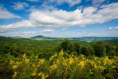 Free View From Highway 181, In Pisgah National Forest, North Carolina Stock Photo - 81857080