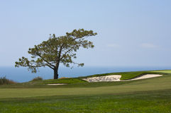 Free View From Torrey Pines Golf Course Stock Photography - 5506352