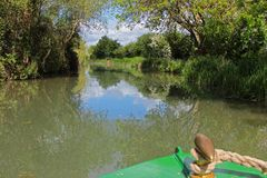 View from the front of a canal boat cruising along the Basingstoke Canal. Cruise along the Basingstoke Canal in a canal / long boat, scenic view from the front Stock Photo