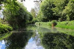 View from the front of a canal boat cruising along the Basingstoke Canal. Cruise along the Basingstoke Canal in a canal / long boat, scenic view from the front Royalty Free Stock Photos