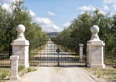 View through the front gate of the white gravel road leading to Tomaresca Tenuta Bocca di Lupo. Pictured through the front gate is the white gravel road leading Stock Photography
