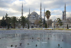 View of the frozen city fountain and the Blue mosque on a winter day. Istanbul Stock Images