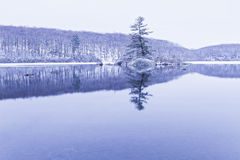 View of the frozen lake. Stock Photography