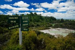 View of Frying Pan Flat, Wai-O-Tapu. Wai-O-Tapu Thermal Wonderland, Rotorua, New Zealand royalty free stock image
