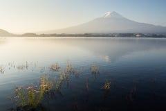 View of Fuji mountain from Kawaguchiko lake Royalty Free Stock Image