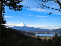 View of Fuji mountain with white snow top, kawaguchiko lake and. Blue sky background through evergreen trees in the morning light scene Royalty Free Stock Photos