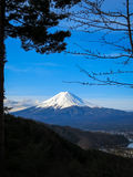 View of Fuji mountain with white snow top, a part of kawaguchiko. Lake and blue sky background through evergreen trees in the morning light scene Stock Photography