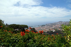 View of Funchal Stock Photos