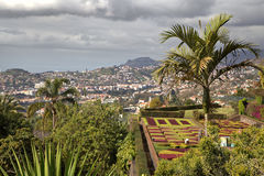 View on Funchal from Madeira botanical garden Stock Image