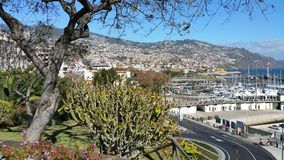 View of Funchal, the main town on Madeira stock images