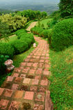 View of garden park,Pathway in park Royalty Free Stock Photo
