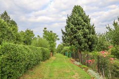 View of the garden plot. Scenic view of the garden plot Stock Image