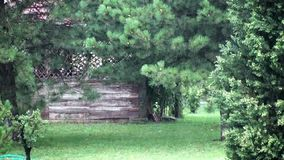 View of a garden with wooden shed in a heavy rainstorm with thunder and rain sounds. On a early morning summer day stock footage