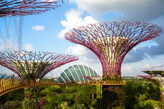 View of Gardens by the Bay. Royalty Free Stock Image