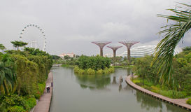 View on Gardens by Marina and Singapore flyer. View on green Gardens by Marina and Singapore flyer in dull weather Stock Photos