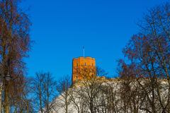 View on Gediminas tower on the castle hill in the old town of Vilnius city in Lithuania. At winter. This tower is very popular tourist destination in Vilnius stock images