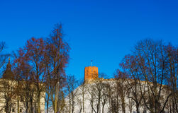 View on Gediminas tower on the castle hill in the old town of Vilnius city in Lithuania. At winter. This tower is very popular tourist destination in Vilnius stock photos