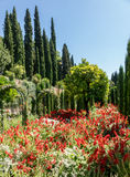 View of Generalife gardens in Alhambra in Granada  in Spain Royalty Free Stock Photography
