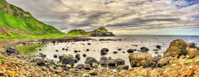 View of the Giant's Causeway, a UNESCO heritage site in Northern Stock Photos